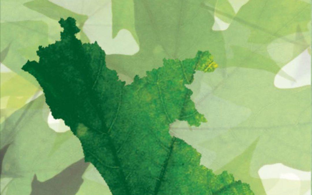Серджо Беллуччи, Фабио Индео – Регион Лацио И Зеленая Экономика